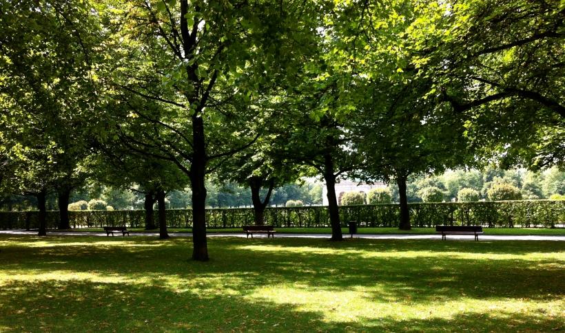 Beyond the hedge of the Hofgarten
